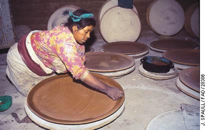 non farming activities in india